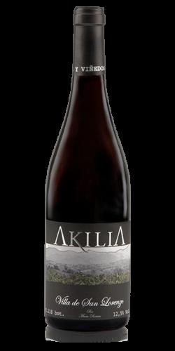"""Akilia """"Villa de San Lorenzo"""""""