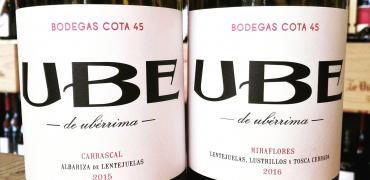 UBE de Ubérrima (Ramiro Ibáñez – COTA 45)