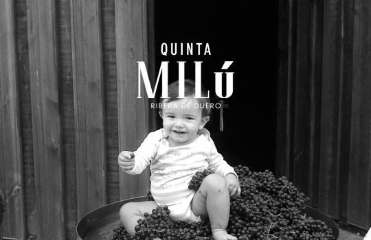Quinta Milú