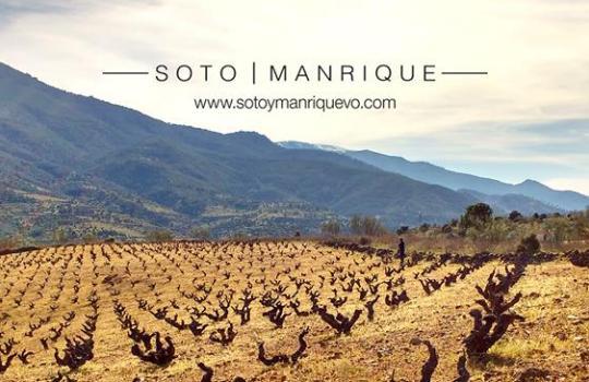 Soto y Manrique, vinos de Cebreros