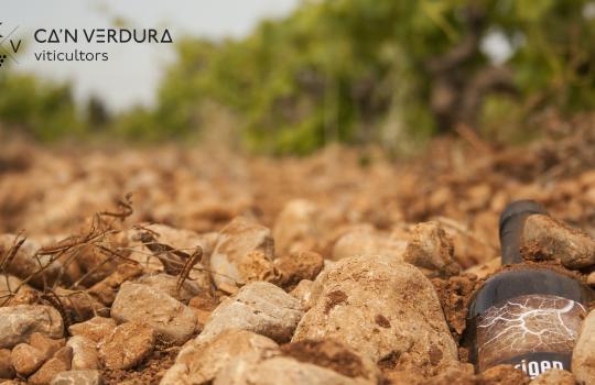 Can Verdura Viticultors